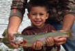 New Mexico Fishing and Stock Report