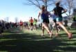 They ran several 5,000-meter races in balmy   weather conditions Saturday morning at both Rio Rancho Cleveland High and over the North      Golf Course at University of New Mexico