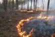 SFNF Plans Prescribed Burn on Jemez Ranger District This Week