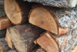 Sales of Fuelwood Permits Temporarily Suspended at Pueblo of Jemez Welcome Center